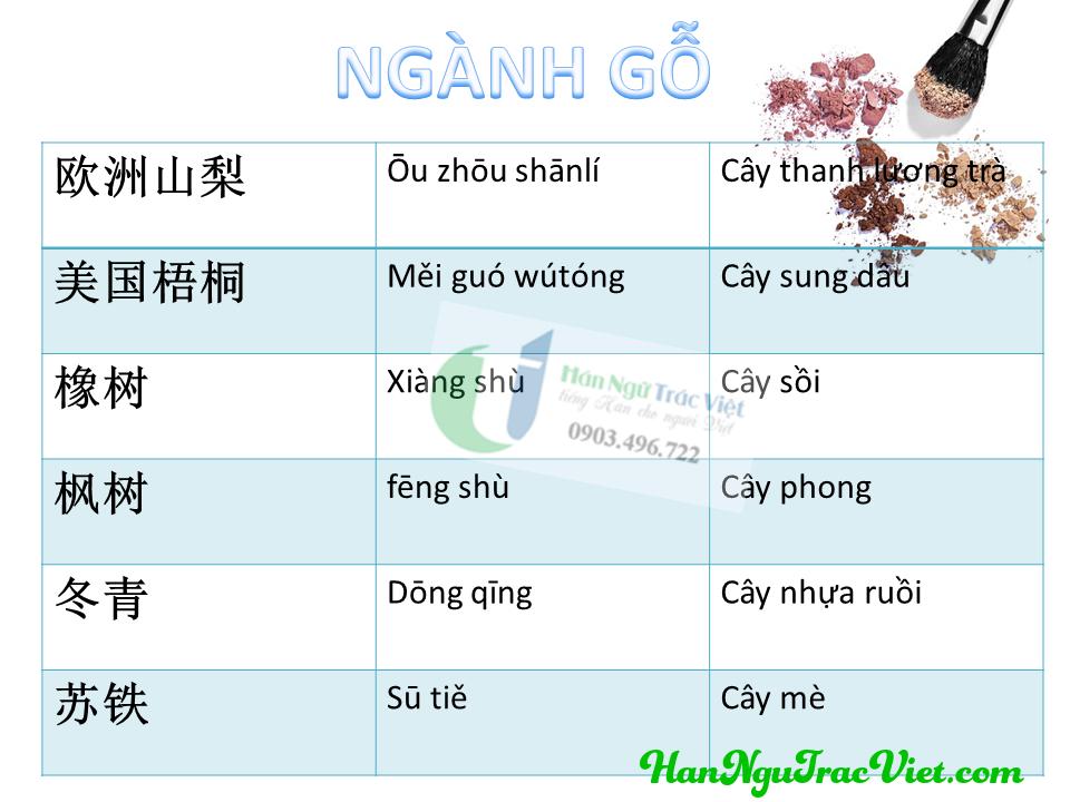 Từ vựng tiếng Trung về ngành gỗ phần 2